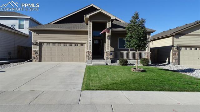 10442 Abrams Drive, Colorado Springs, CO 80925 (#3637089) :: Venterra Real Estate LLC