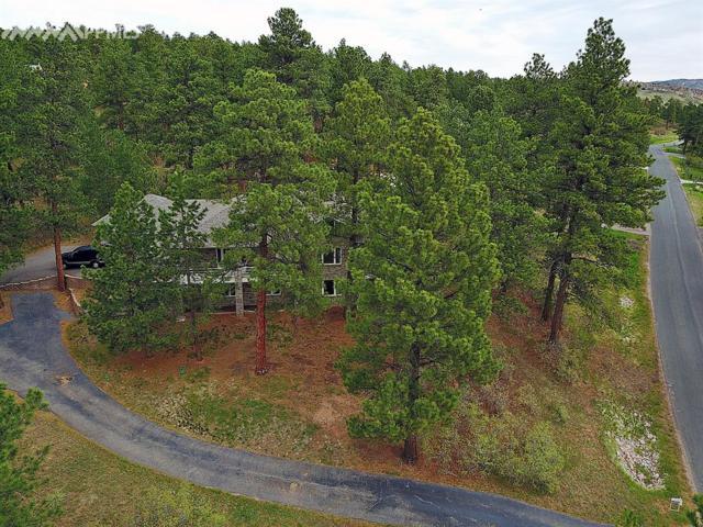 4010 Cheyenne Drive, Larkspur, CO 80118 (#3637774) :: 8z Real Estate