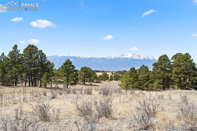 9227 Nature Refuge Way, Colorado Springs, CO 80908 (#3639510) :: Tommy Daly Home Team