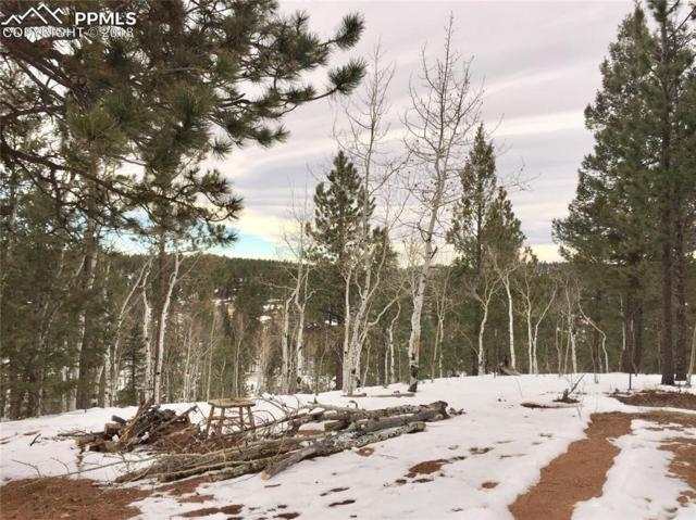 5520 County 5 Road, Divide, CO 80814 (#3643011) :: The Peak Properties Group