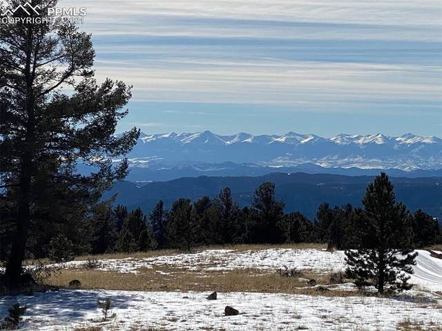 15813 Being Verified Road, Cripple Creek, CO 80813 (#3645713) :: Action Team Realty