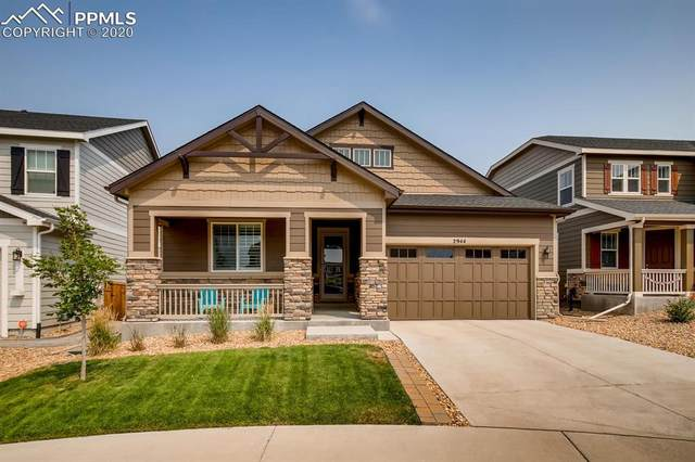 2944 Setting Sun Avenue, Castle Rock, CO 80109 (#3647484) :: 8z Real Estate