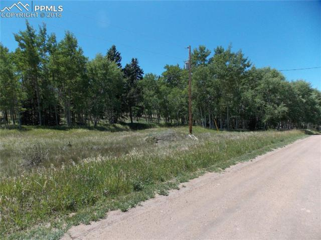 Will Stutley Drive, Divide, CO 80814 (#3654509) :: Venterra Real Estate LLC