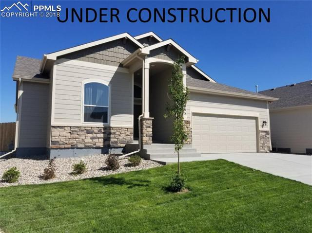 6707 Mandan Drive, Colorado Springs, CO 80925 (#3660014) :: Action Team Realty