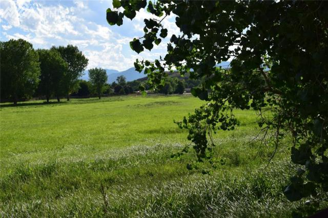 279 Four Mile Lane, Canon City, CO 81212 (#3660040) :: Action Team Realty