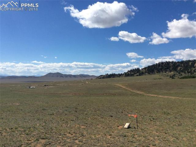 tbd County 333 Road, Lake George, CO 80827 (#3663764) :: Action Team Realty