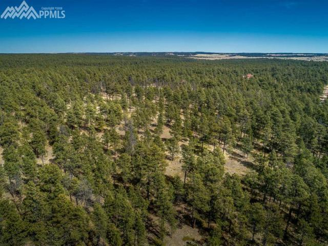 0 W Goshawk Road, Colorado Springs, CO 80908 (#3667263) :: The Peak Properties Group