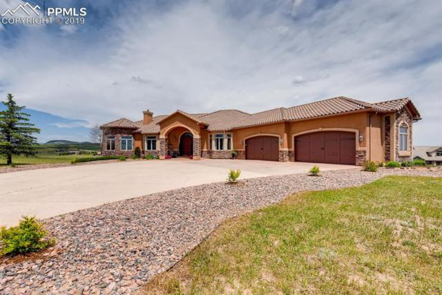 19834 Kershaw Court, Colorado Springs, CO 80132 (#3667642) :: Action Team Realty