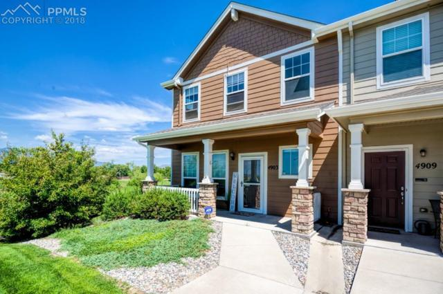 4903 Black Vulture Grove, Colorado Springs, CO 80916 (#3670267) :: The Treasure Davis Team