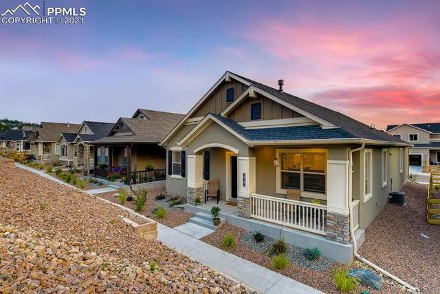 684 Sage Forest Lane, Monument, CO 80132 (#3675924) :: The Artisan Group at Keller Williams Premier Realty