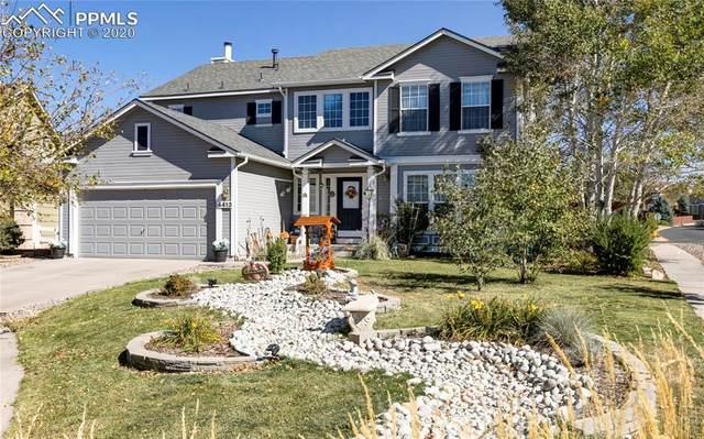 4413 Slice Drive, Colorado Springs, CO 80922 (#3680828) :: 8z Real Estate