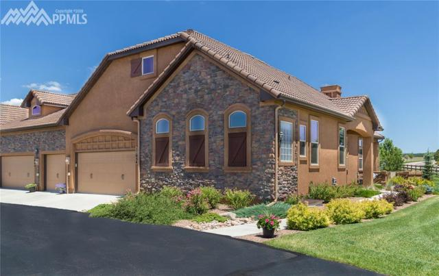 13054 Cake Bread Heights, Colorado Springs, CO 80921 (#3681529) :: The Hunstiger Team