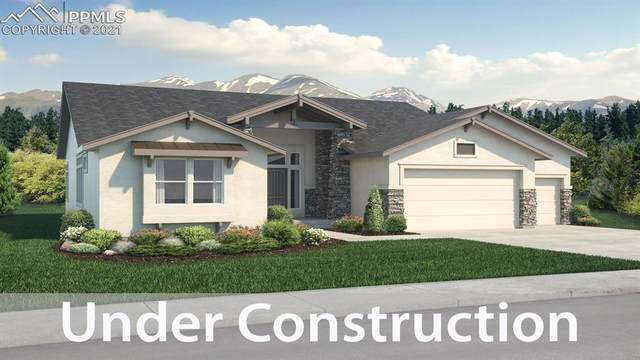 1070 Panoramic Drive, Monument, CO 80132 (#3683145) :: Tommy Daly Home Team