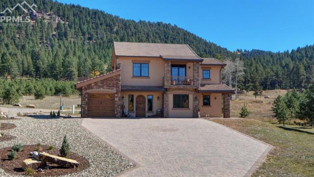 841 Majestic Parkway, Woodland Park, CO 80863 (#3689617) :: The Treasure Davis Team