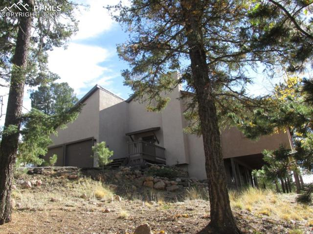 128 Wahsatch Road, Florissant, CO 80816 (#3689905) :: The Daniels Team