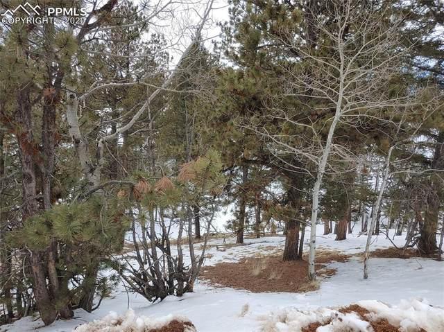 61 Lost Park Circle, Florissant, CO 80816 (#3693292) :: 8z Real Estate