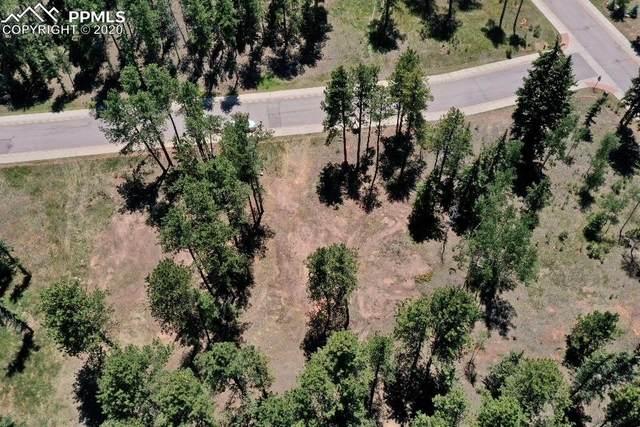 610 Meadowlark Lane, Woodland Park, CO 80863 (#3694680) :: CC Signature Group