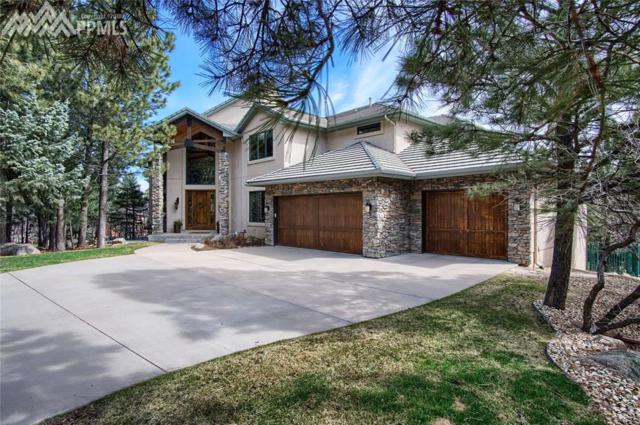 751 Silver Oak Grove, Colorado Springs, CO 80906 (#3695407) :: CENTURY 21 Curbow Realty