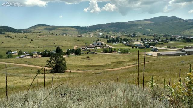0 N Being Verified Street, Cripple Creek, CO 80813 (#3699519) :: Harling Real Estate