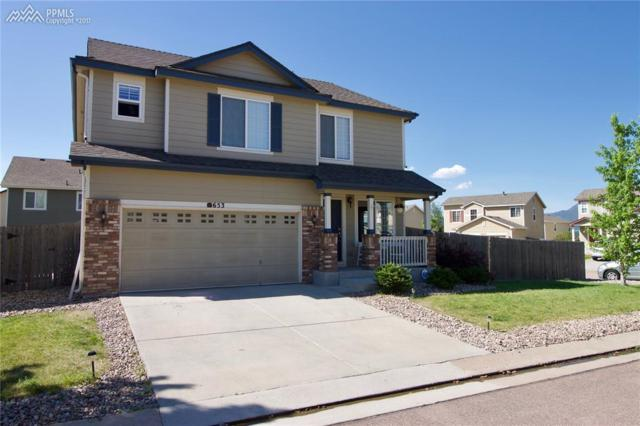 653 Blue Ridge Point, Colorado Springs, CO 80921 (#3705033) :: Jason Daniels & Associates at RE/MAX Millennium