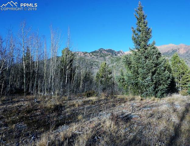 TBD Castle Ridge View, Cripple Creek, CO 80813 (#3705083) :: Fisk Team, RE/MAX Properties, Inc.
