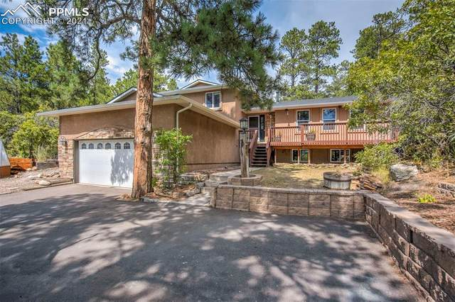 920 Tari Drive, Colorado Springs, CO 80921 (#3709609) :: Tommy Daly Home Team