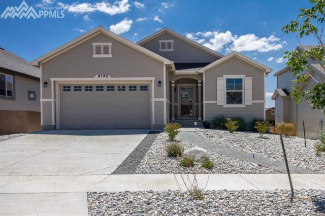 9143 Argentine Pass Trail, Colorado Springs, CO 80924 (#3713886) :: The Daniels Team