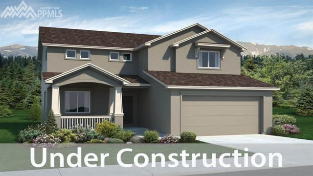 2382 Pelican Bay Drive, Monument, CO 80132 (#3719779) :: 8z Real Estate