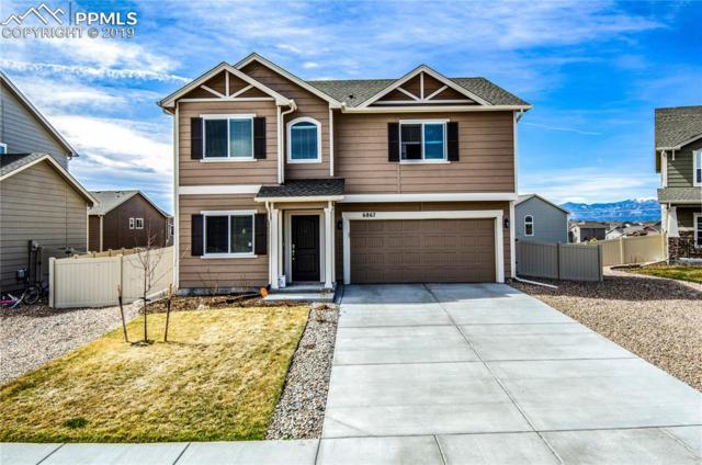 6867 Oak Vine Court, Colorado Springs, CO 80908 (#3722522) :: Jason Daniels & Associates at RE/MAX Millennium