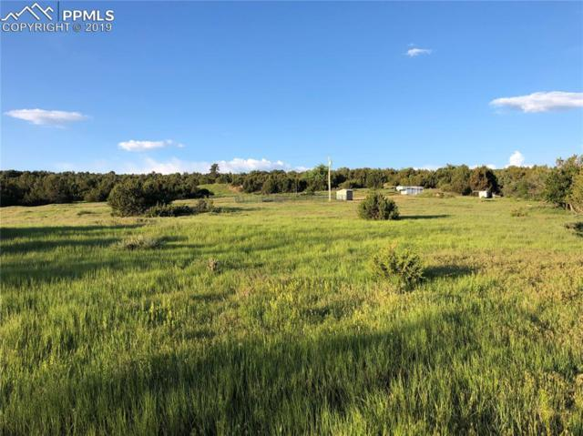 Siloam Road, Beulah, CO 81023 (#3725193) :: Action Team Realty