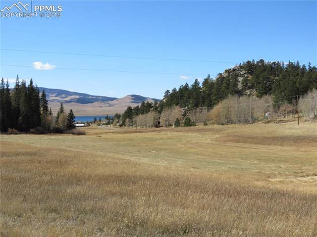 000 County 92 Road, Lake George, CO 80827 (#3725523) :: The Kibler Group