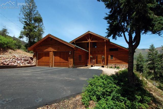 9110 Mountain Road, Cascade, CO 80809 (#3726964) :: The Treasure Davis Team