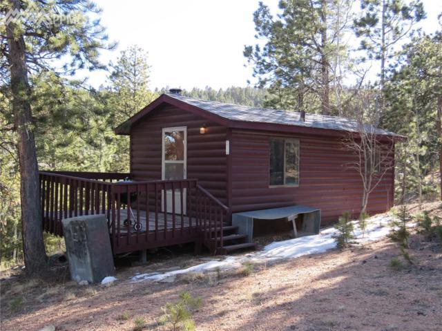 64 Potlatch Trail, Woodland Park, CO 80866 (#3728294) :: Jason Daniels & Associates at RE/MAX Millennium