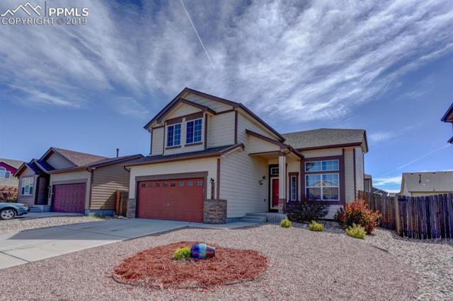 10210 Desert Bloom Way, Colorado Springs, CO 80925 (#3728840) :: CC Signature Group