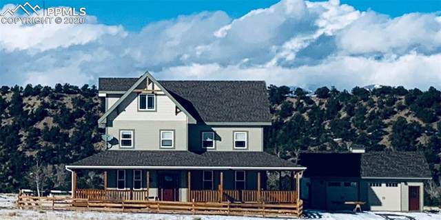 12908 County Road 162, Nathrop, CO 81236 (#3730272) :: The Daniels Team