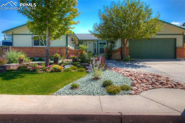 6441 Dewsbury Drive, Colorado Springs, CO 80918 (#3730943) :: 8z Real Estate