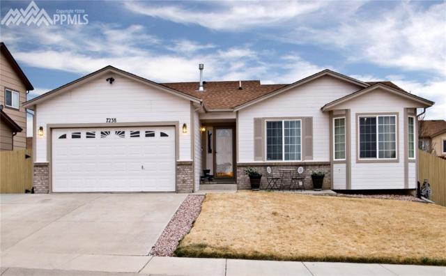 7238 Lone Eagle Lane, Colorado Springs, CO 80925 (#3731939) :: The Dunfee Group - Keller Williams Partners Realty