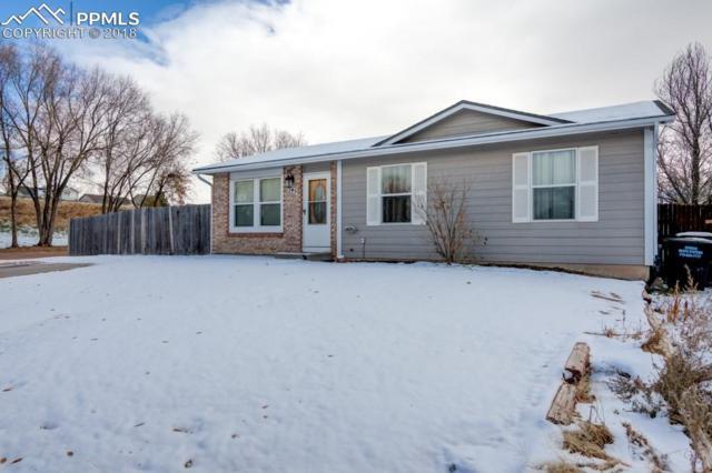 5145 Webbed Foot Way, Colorado Springs, CO 80911 (#3732022) :: The Peak Properties Group