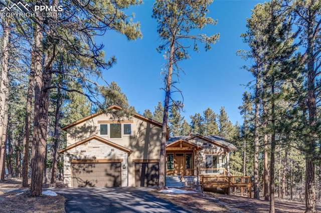 5785 Ada Lane, Larkspur, CO 80118 (#3732986) :: The Treasure Davis Team