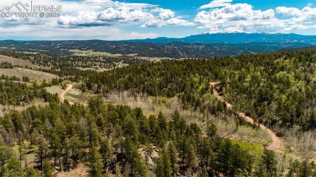 1496 Park Ridge Drive, Florissant, CO 80816 (#3735160) :: Compass Colorado Realty