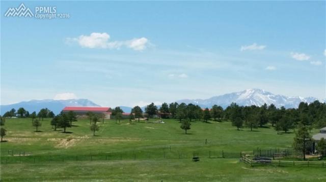 16375 Open Sky Way, Colorado Springs, CO 80908 (#3740630) :: 8z Real Estate