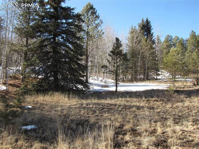987 W Bison Creek Trail, Divide, CO 80814 (#3741857) :: The Dixon Group