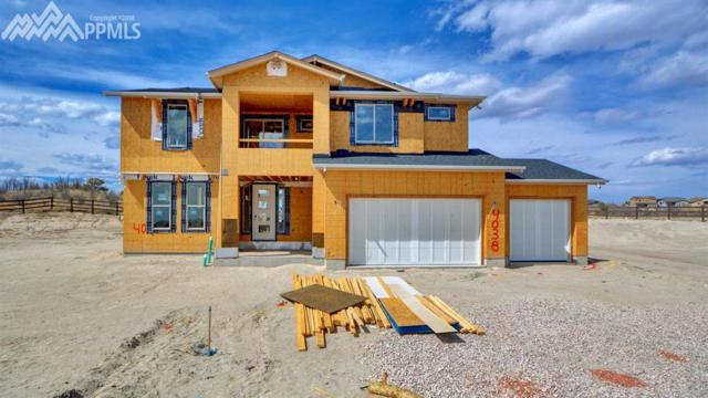 4038 Notch Trail, Colorado Springs, CO 80924 (#3743439) :: Action Team Realty