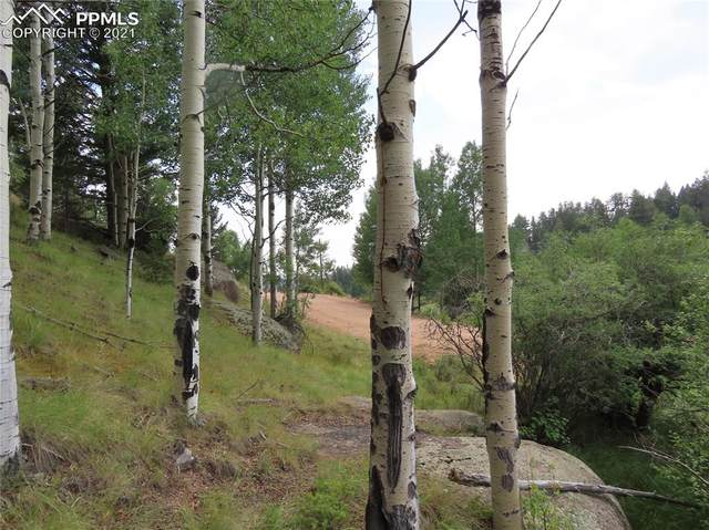 19 S Pinon Circle, Florissant, CO 80816 (#3747835) :: Tommy Daly Home Team