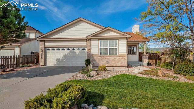 17040 Mountain Lake Drive, Monument, CO 80132 (#3754739) :: 8z Real Estate