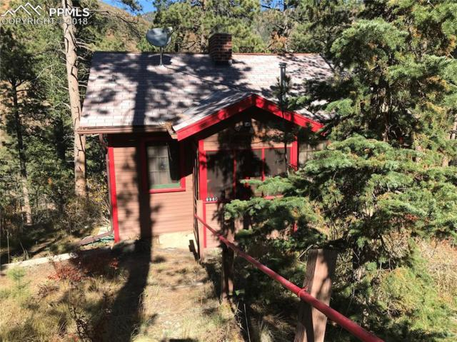9960 Mesa Road, Cascade, CO 80809 (#3755919) :: The Peak Properties Group