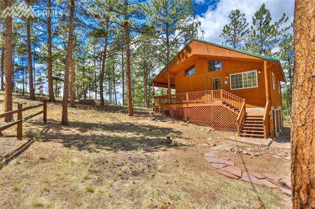 352 Peak View Circle, Florissant, CO 80816 (#3760086) :: The Peak Properties Group
