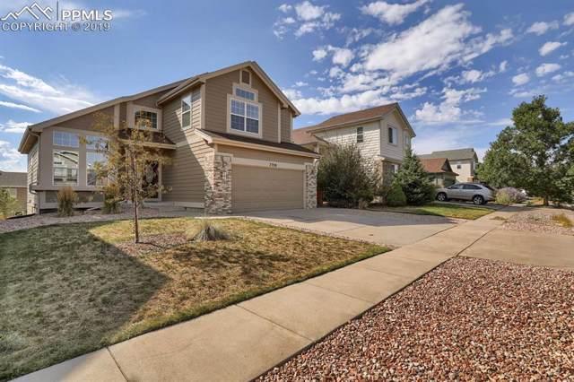 7330 Straggler Circle, Colorado Springs, CO 80922 (#3760498) :: The Daniels Team