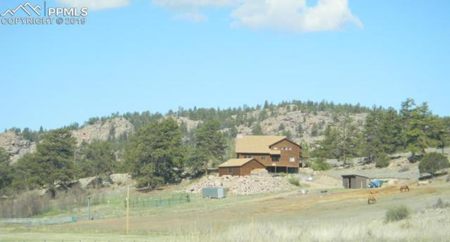 1028 County 111 Road, Florissant, CO 80816 (#3766125) :: The Peak Properties Group