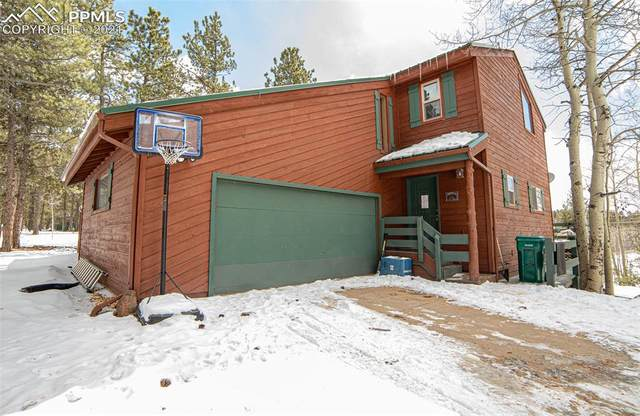603 Kutsu Ridge Road, Florissant, CO 80816 (#3767957) :: 8z Real Estate